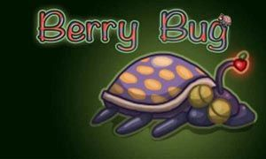 Berry Bug